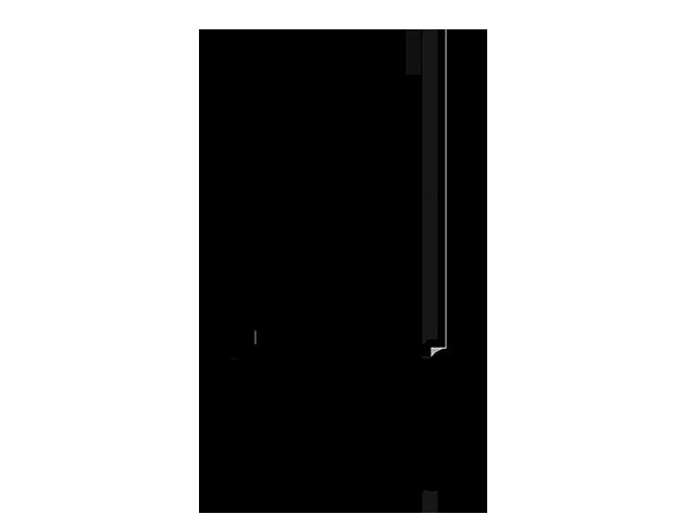 2014-numaga-jubileumlogo-4